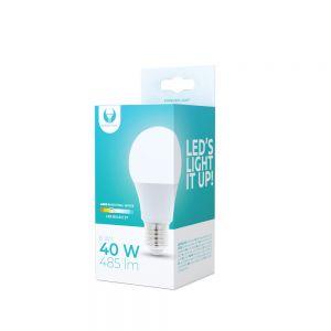 LED žarnica 6W (40w), 4500K E27